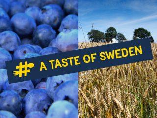 A Taste of Sweden